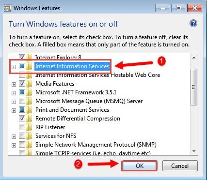 گزینه  internet information Services